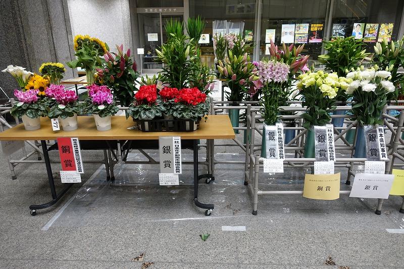 http://www.k-engei.net/kakikyokai/contents/news/DSC00669.jpg