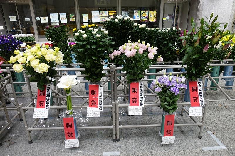 http://www.k-engei.net/kakikyokai/contents/news/DSC00670.jpg